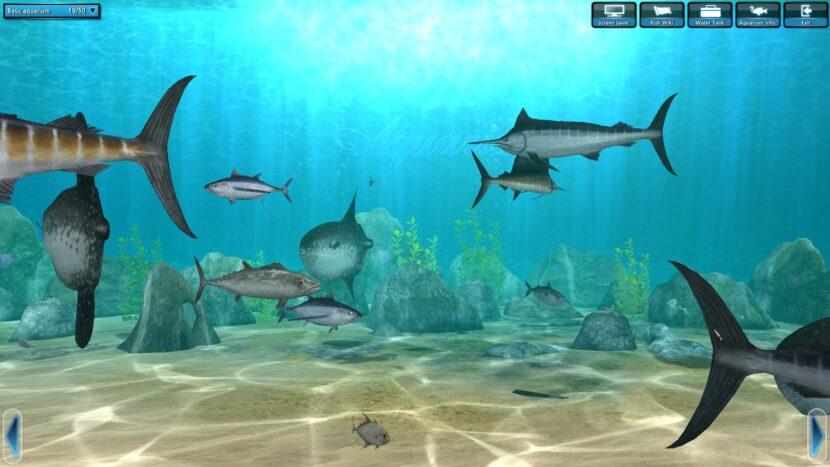 World of Fishing онлайн
